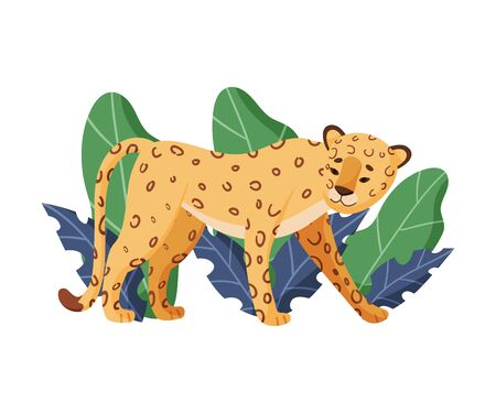 Spotted Leopard Standing Near Tropical Leaves Vector Illustration. African Exotic Trendy Wildlife Concept