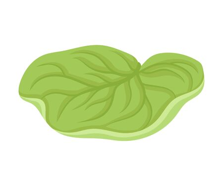 Waterlily Sepal With Leaf Venetion Flower Part Vector Illustration. Aquatic Beautiful Element