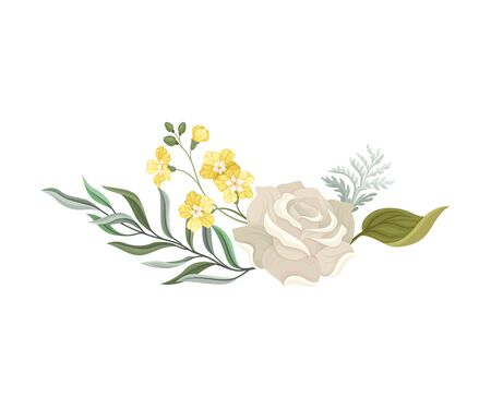 White Roses and Twigs Vector Elements Set For Decoration