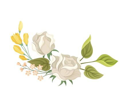 White Roses Decorated Vector Element. Botanical Graphic Composition. Flower Illustration Concept