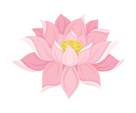 Waterlily Scaled Pink Flower With Petals Vector Illustration  イラスト・ベクター素材