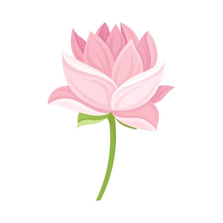Semi-closed Waterlily Bud With Pink Petals and Floral Stem Vector Illustration Vector Illustration