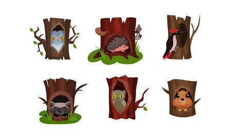 Cute animals and birds in tree hollows in the deep forest. Gray and polar owls, prickly hedgehog, raccoon, woodpecker, small hamster