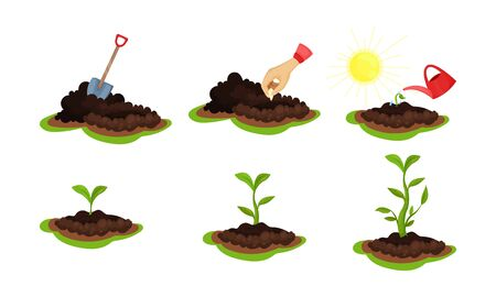 Different stages of green plant life cycle. Shovel in the ground, man hand seeding, watering and growing the flower or tree. Vector Illustration set, isolated on white background.