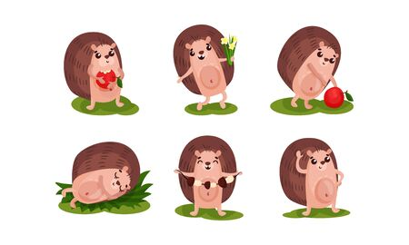 Set of six funny hedgehogs in different actions and poses. Eating apple, sleeping, collecting the mushrooms and flowers. Vector illustration, cartoon character, isolated on white background. Ilustrace