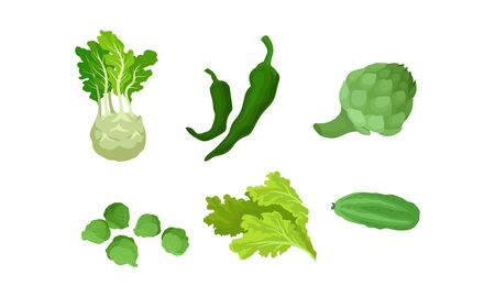 Organic Natural Food Concept. Vegetables And Herbs Vector Illustration Set Isolated On White Background