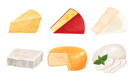 Different Noble Cheese Vector Collection. Dairy Product Diversity Concept. Organic Nutrition Collection Иллюстрация