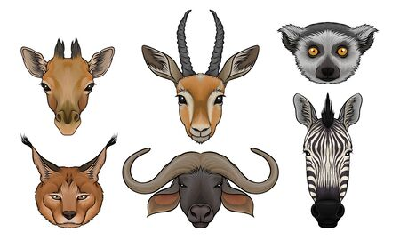 Wild Animals Muzzles Vector Set. Highly Detailed Neb Collection. Furry Creatures