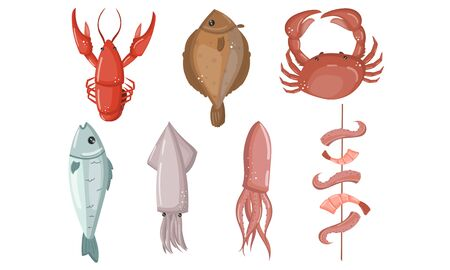 Seafood Vector Set Isolated On White Background. Fresh Ocean Cooking Ingredient