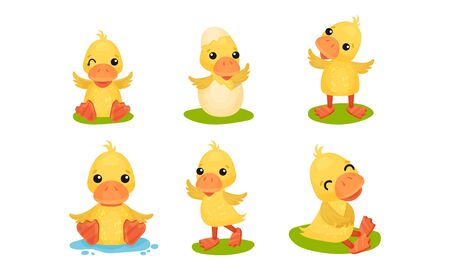 Cute Set With Yellow Ducks In Different Poses Vector Illustration Cartoon Character Illusztráció