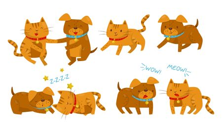 Set With Different Relationship Between Dogs And Cats Vector Illustration Cartoon Character