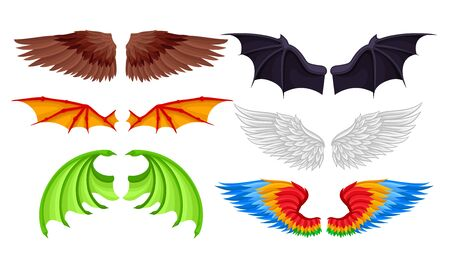 Wings of different birds and fabulous animals. Vector illustration.