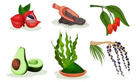 Set of healing fruits and plants. Vector illustration.