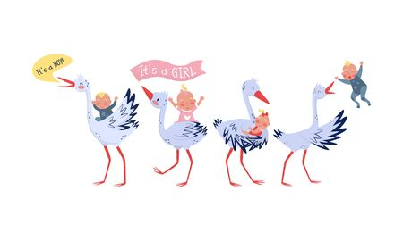 Miraculous Storks Deliver Newborn Boys and Girls Home Vector Illustration Set Isolated On White Background
