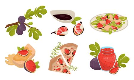 Exotic And Mediterranean Fig Dishes And Jam Vector Illustration Set Isolated On White Background Ilustracja