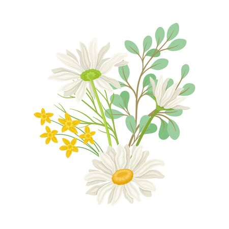 Daisy Flowers Vector Composition. Field Chamomile Blossom Concept. Wild Floral Collection Vectores