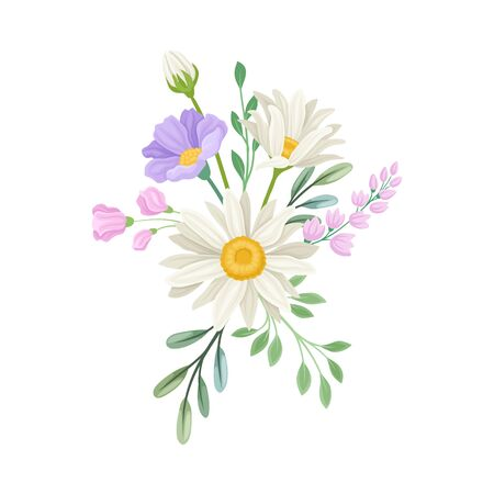 Bouquet of Daisy Flowers Vector Composition. Natural Floral Decoration