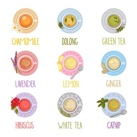 Different Tea Types Vector Set. Colorful Herbal Drinks Poured in Teacup Standing on Saucer View From Above Collection. Stock Illustratie
