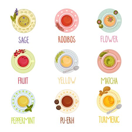 Different Tea Types Vector Set. Colorful Herbal Drinks Poured in Teacup Standing on Saucer View From Above Collection