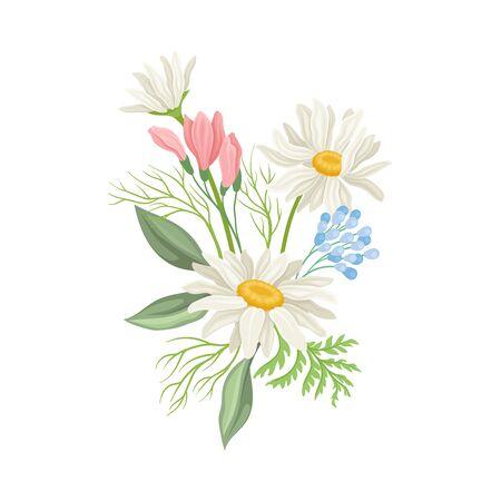Daisy Bloemen Vector Samenstelling. Veld Kamille Bloesem Concept. Wilde bloemencollectie Vector Illustratie