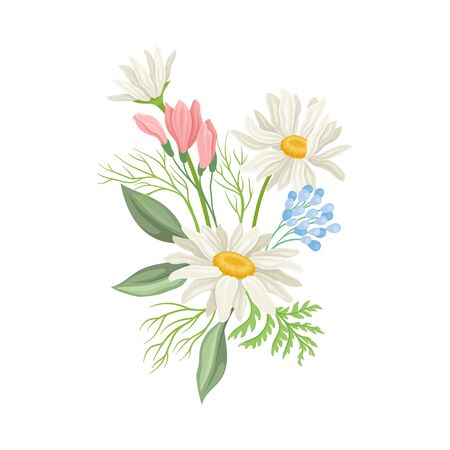 Daisy Flowers Vector Composition. Field Chamomile Blossom Concept. Wild Floral Collection Vetores