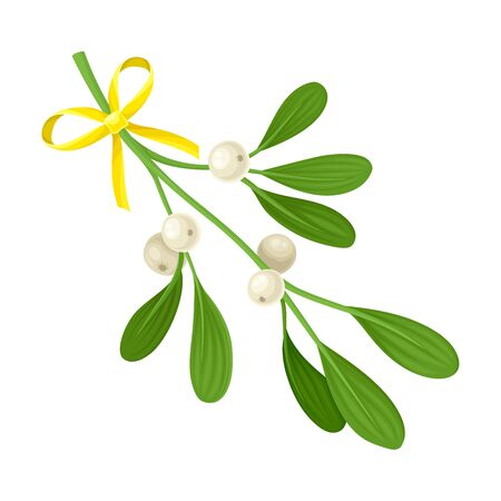 Mistletoe Twig With Berries Tied With Festive Silk Ribbon Vector Illustration