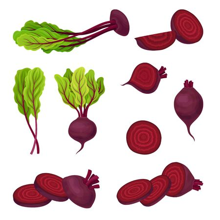 Beetroot with Top Leaves and Half of Beet Vector Set. Beet With Separated Leaves, Cut Beet Round Slices. Fresh Ingredient for Vegetable Salad