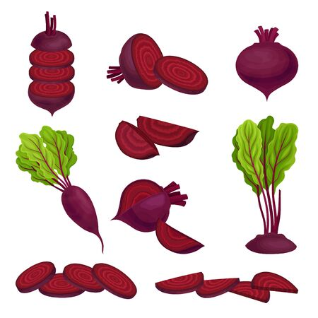 Beetroot with Top Leaves and Half of Beet Vector Set Illusztráció
