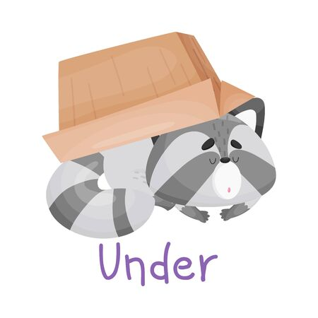 Baby Raccoon Laying Under The Box With Handwritten Inscription Preposition Under Vector Illustration Cartoon Character