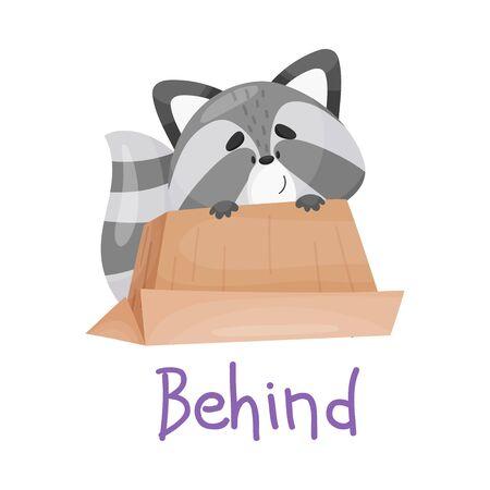 Joli petit raton laveur derrière la boite, avec inscription manuscrite Behind. De la collection d'animaux drôles de prépositions. Illustration vectorielle, personnage de dessin animé, isolé, fond blanc.