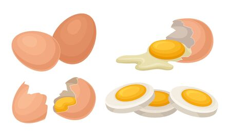 Fresh and Cooked Eggs Set, Broken Eggs with Cracked Shell, Healthy Organic Food Vector Illustration Vector Illustratie