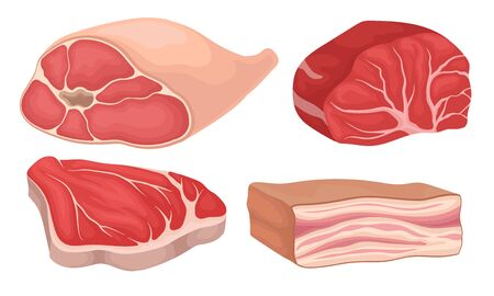 Meat Collection, Meat Parts Assortment, Fresh Organic Farm Products Vector Illustration on a White Background. Ilustração