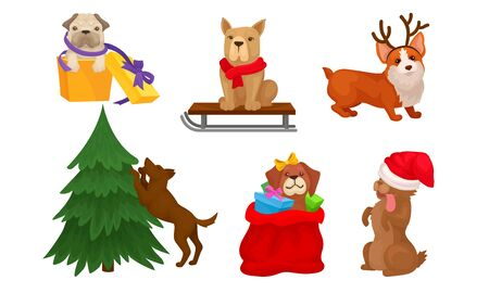 Christmas Dogs Collection, Cute Pets of Different Breeds with Holiday Accessories Vector Illustration on White Background.