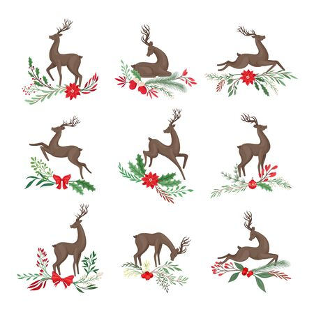 Deer in Different Poses with Holiday Twigs and Branches Illustration