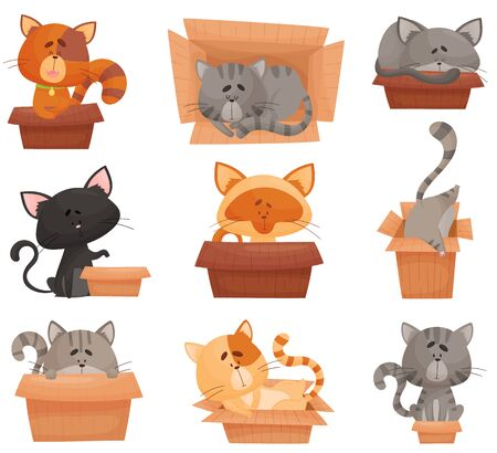 Cats Sleeping and Sitting in Cardboard Boxes Vector Set. Favorite Place of Domestic Fluffy Pets