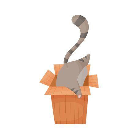Gato tratando de entrar en la ilustración de Vector de caja de cartón