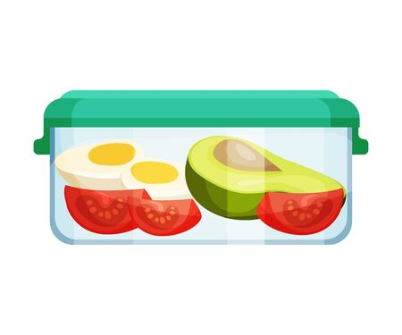 Different Food Stored in Hermetic Container Vector Illustration 일러스트