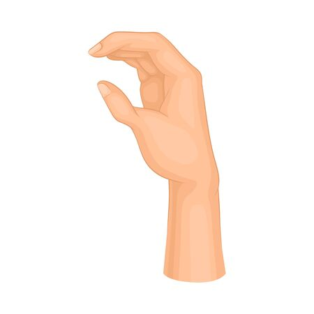 Gesture with Hand Illustrated on White Background Vector Element
