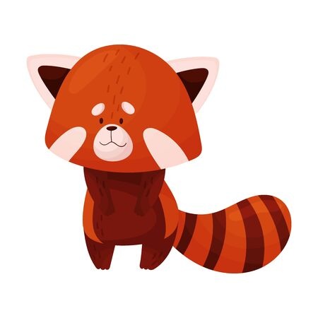 Cartoon Red Panda Character Standing on the Ground Vector Illustration
