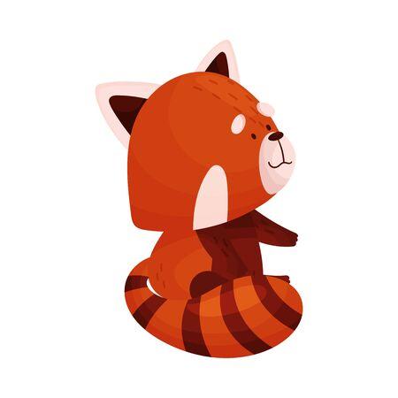 Cute Cartoon Red Panda Standing Looking Sideward Vector Illustration Illustration