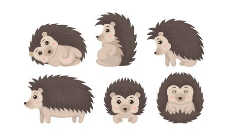 Cute Hedgehogs in Various Poses Vector Set. Friendly Forest Creature Collection Ilustrace