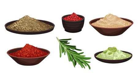 Heaps of Different Spices and Condiments Poured in Bowl Vector Set. Organic Natural Seasoning for Cooking Concept Illustration