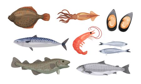 Raw and Uncooked Seafood Vector Set. Fresh Marine Products for Market. Volume Shiny Crustacean Collection 向量圖像