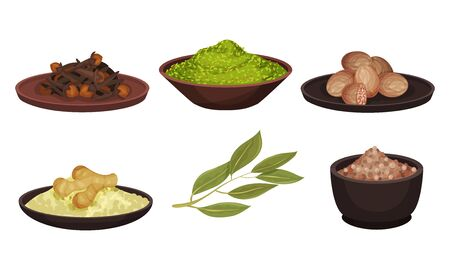 Different Spices and Condiments Dried and Powdered Poured in Bowl Vector Set. Organic Natural Seasoning for Cooking Concept