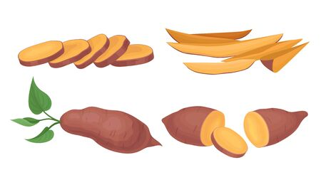 Chopped and Cut into Slices Sweet Potatoes Vector Set Illustration