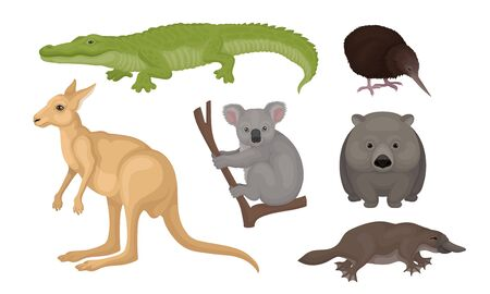 Wild Australian Animals and Birds Isolated on White Background Vector Set