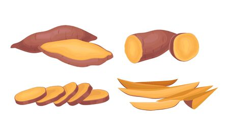 Chopped and Cut into Slices Sweet Potatoes Vector Set. Raw Batata Crop Concept Illustration