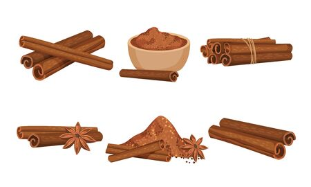 Cinnamon Sticks and Powdered Condiment Poured in Ceramic Bowl Vector Set 向量圖像