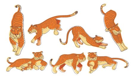 Stylized Tiger Animal in Different Poses Vector Set