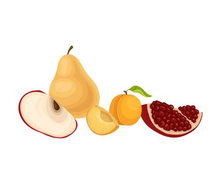 Fruits Isolated on White Background Vector Illustration. Food for Good Brain Function. Products Containing Vitamins for Memory Concept Vetores